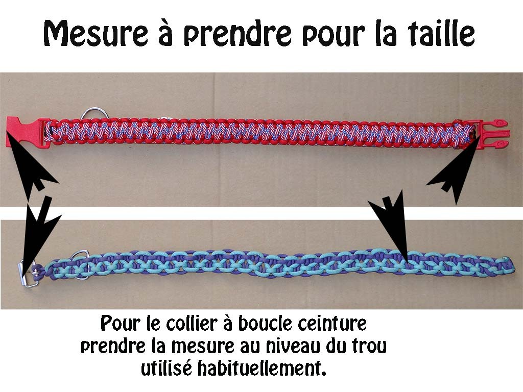 guide mesure collier chien